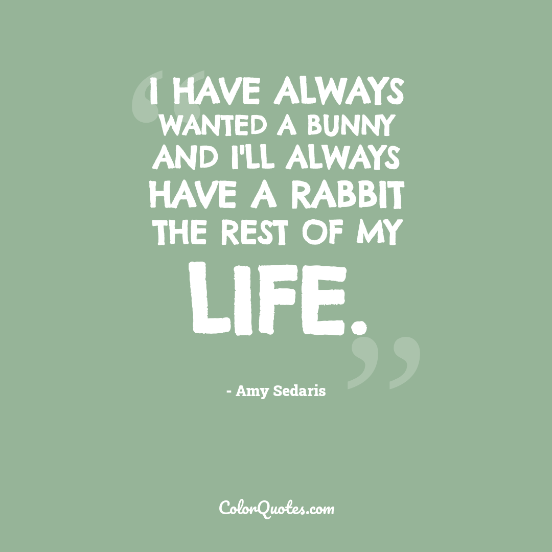 I have always wanted a bunny and I'll always have a rabbit the rest of my life.
