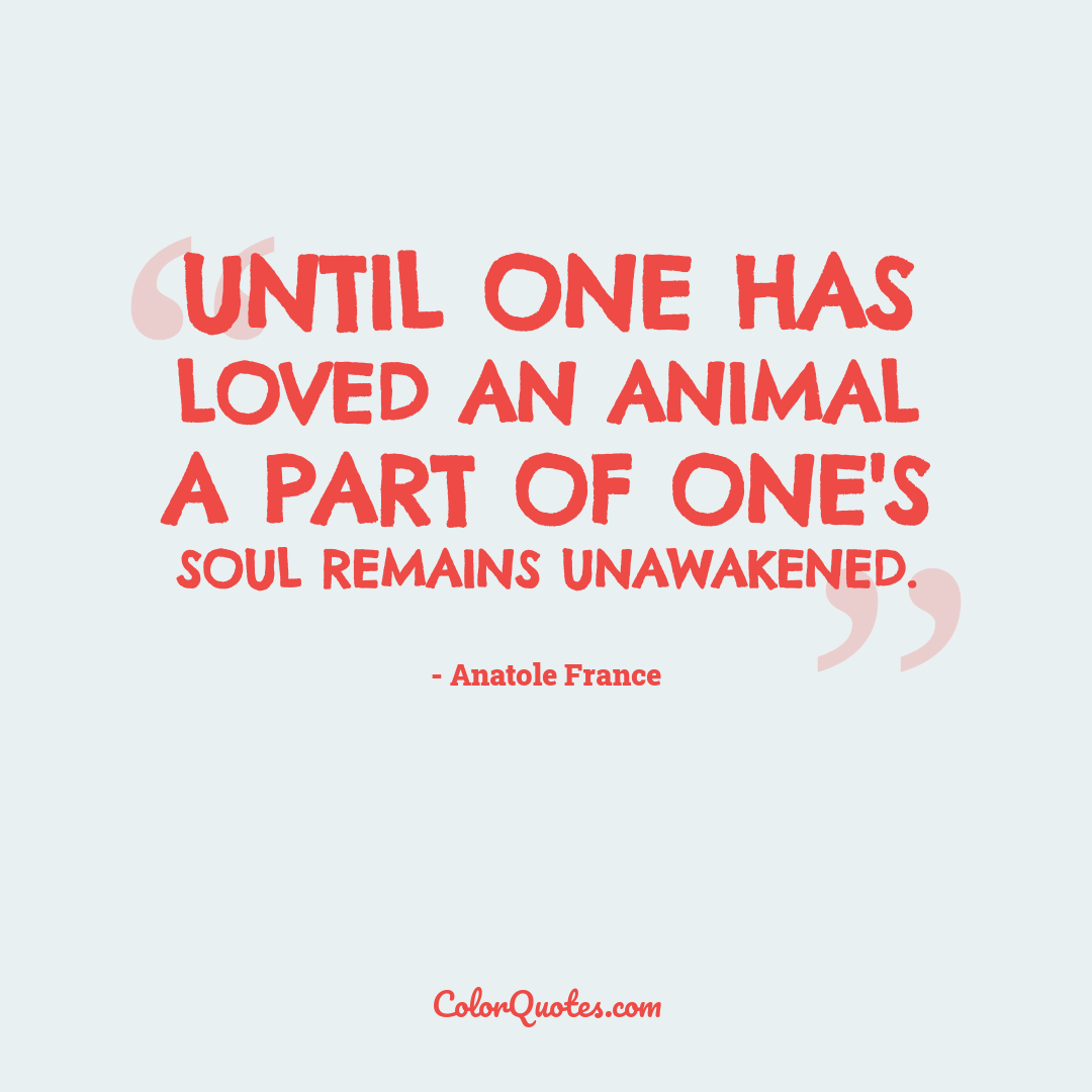 Until one has loved an animal a part of one's soul remains unawakened.