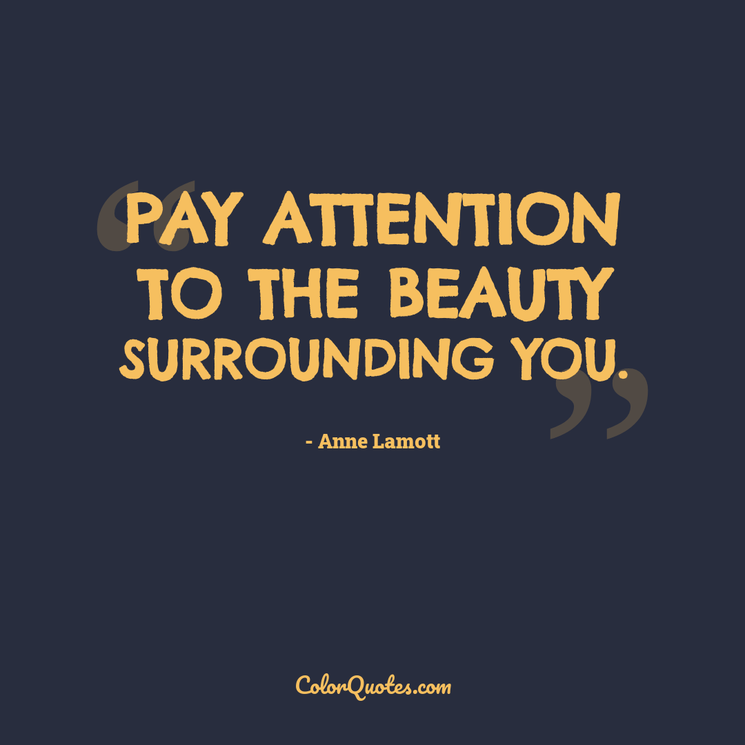Pay attention to the beauty surrounding you.