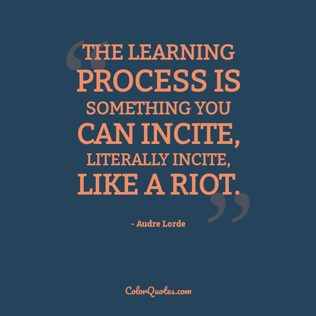 The learning process is something you can incite, literally incite, like a riot.