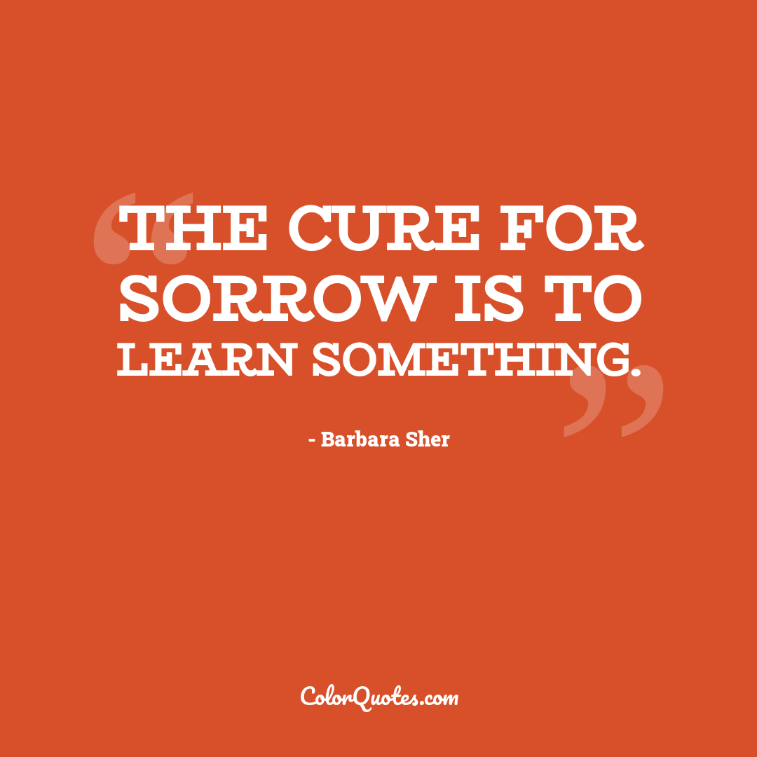 The cure for sorrow is to learn something.