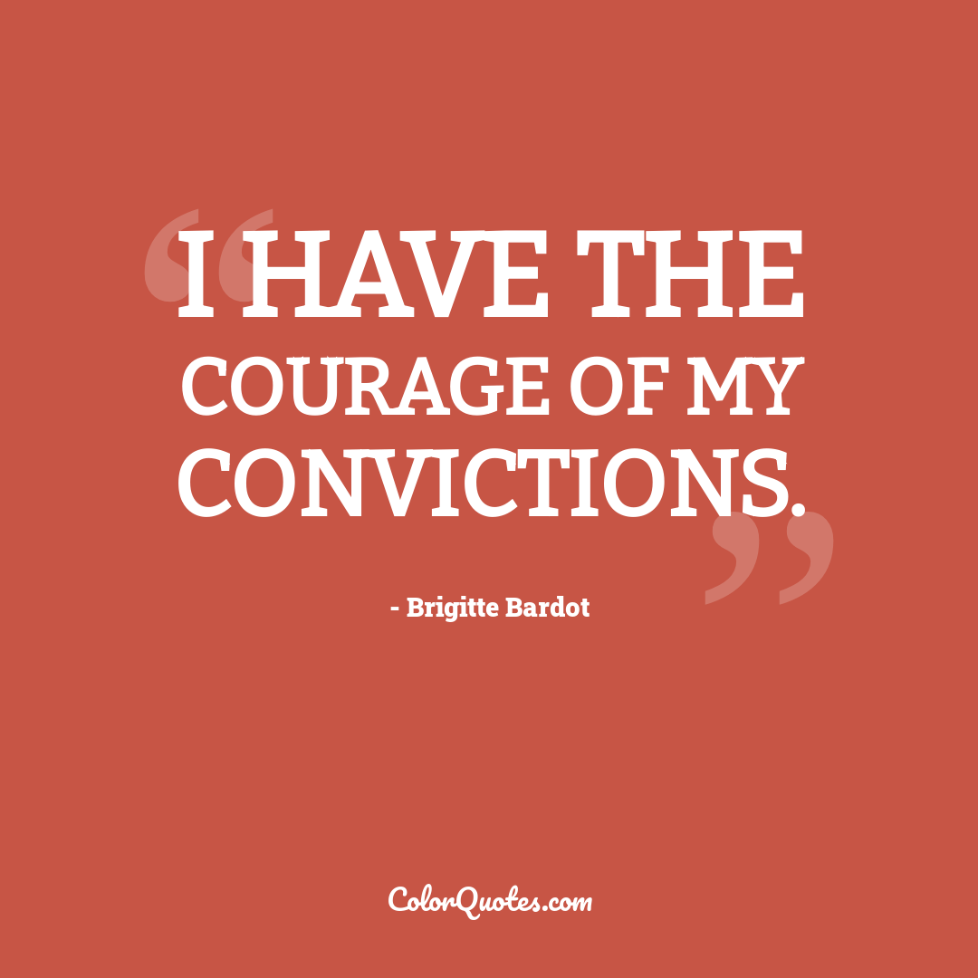 I have the courage of my convictions.