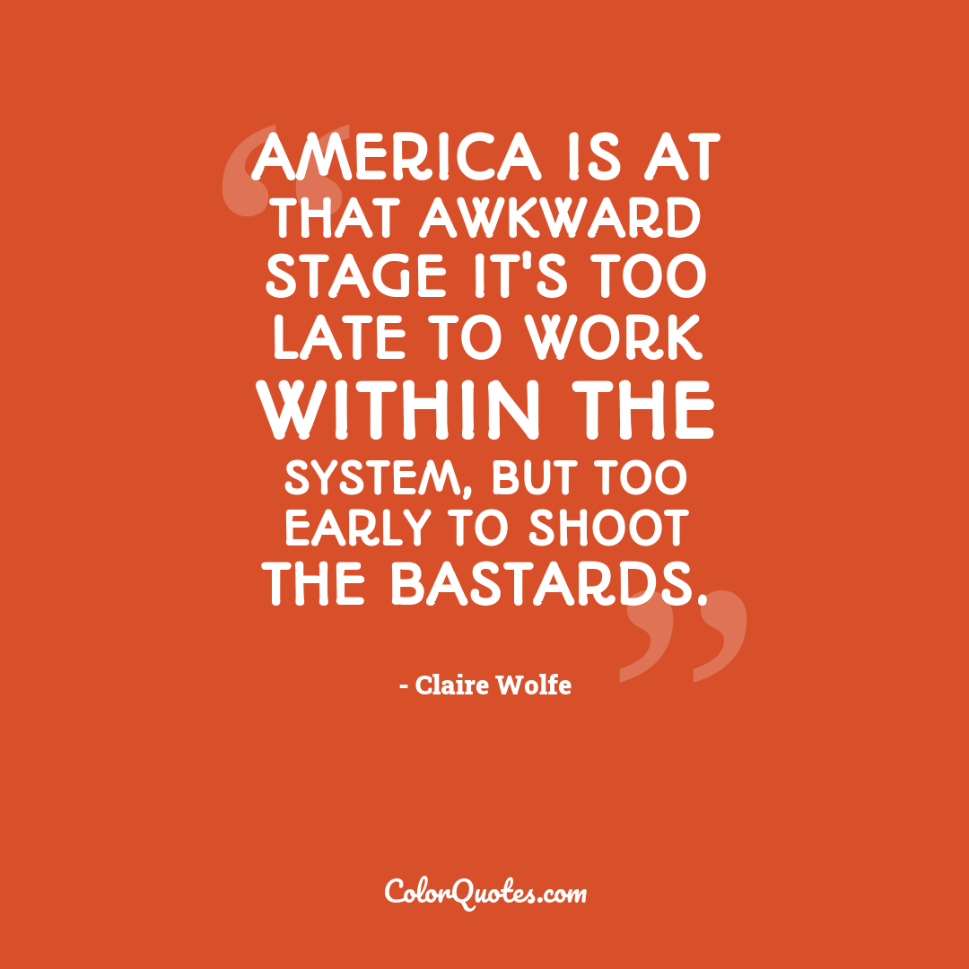 America is at that awkward stage it's too late to work within the system, but too early to shoot the bastards.