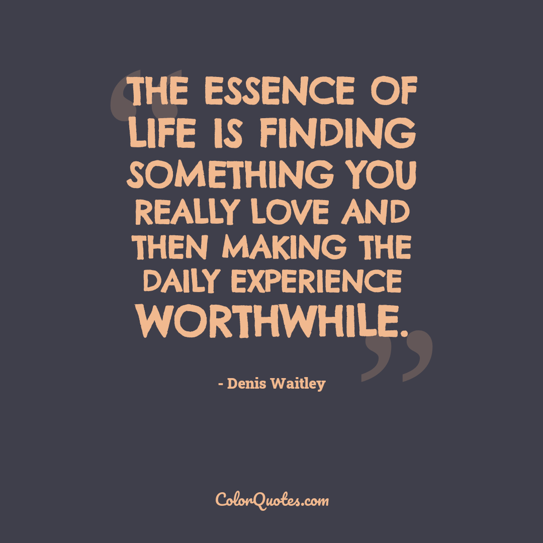 The essence of life is finding something you really love and then making the daily experience worthwhile.