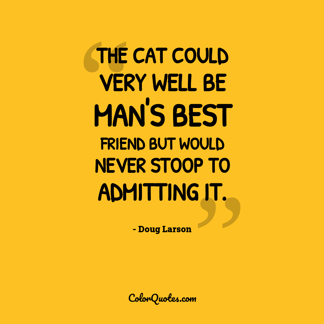 The cat could very well be man's best friend but would never stoop to admitting it.