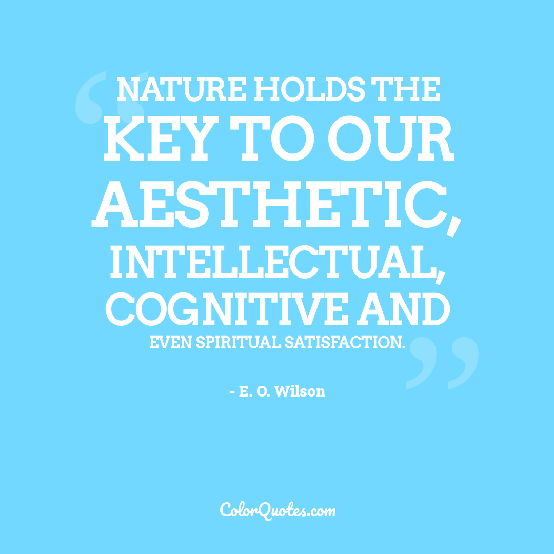 Nature holds the key to our aesthetic, intellectual, cognitive and even spiritual satisfaction.