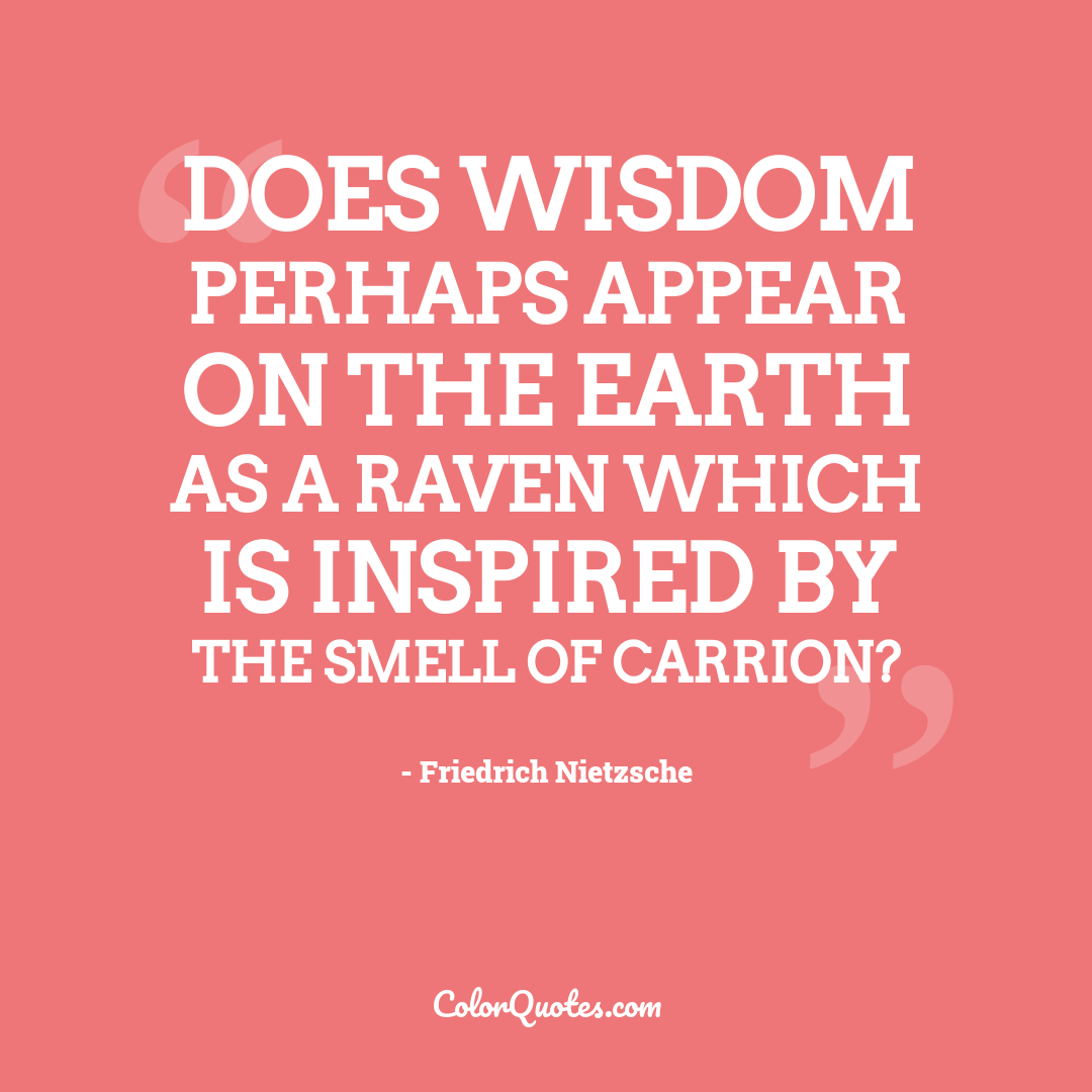 Does wisdom perhaps appear on the earth as a raven which is inspired by the smell of carrion?