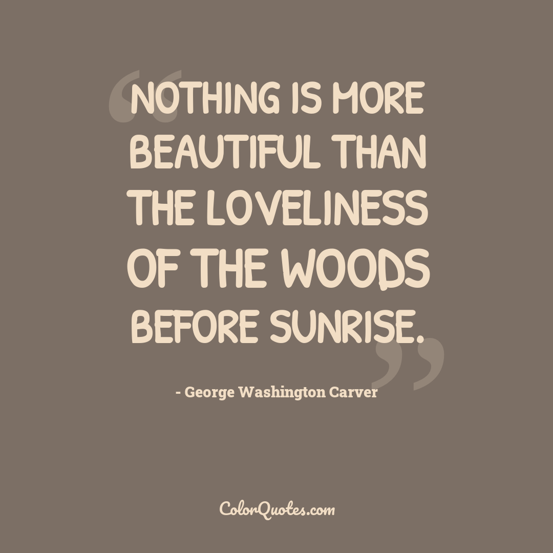 Nothing is more beautiful than the loveliness of the woods before sunrise.