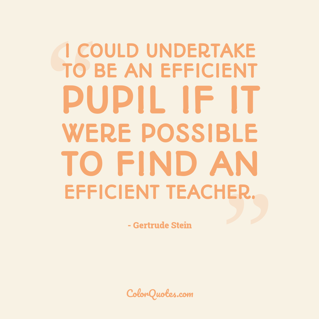 I could undertake to be an efficient pupil if it were possible to find an efficient teacher.