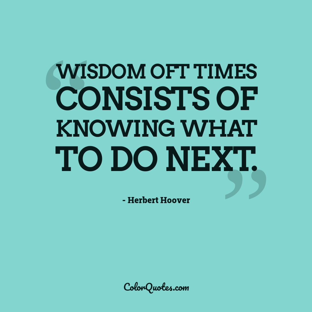 Wisdom oft times consists of knowing what to do next.