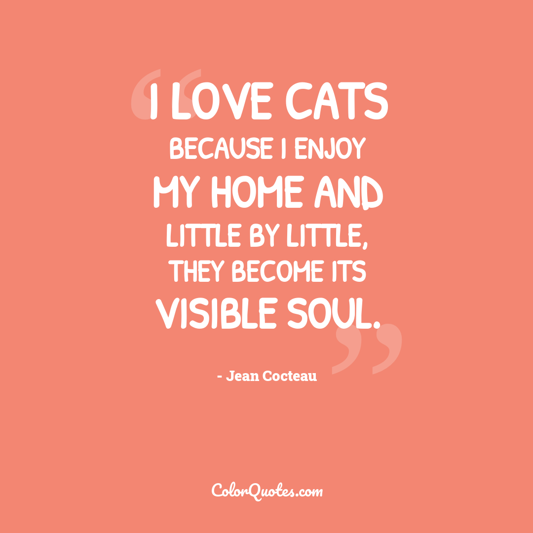 I love cats because I enjoy my home and little by little, they become its visible soul.