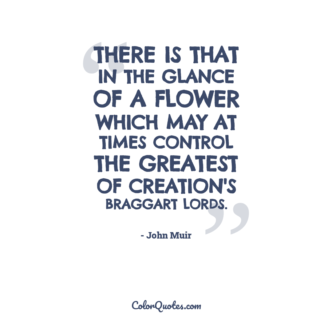 There is that in the glance of a flower which may at times control the greatest of creation's braggart lords.