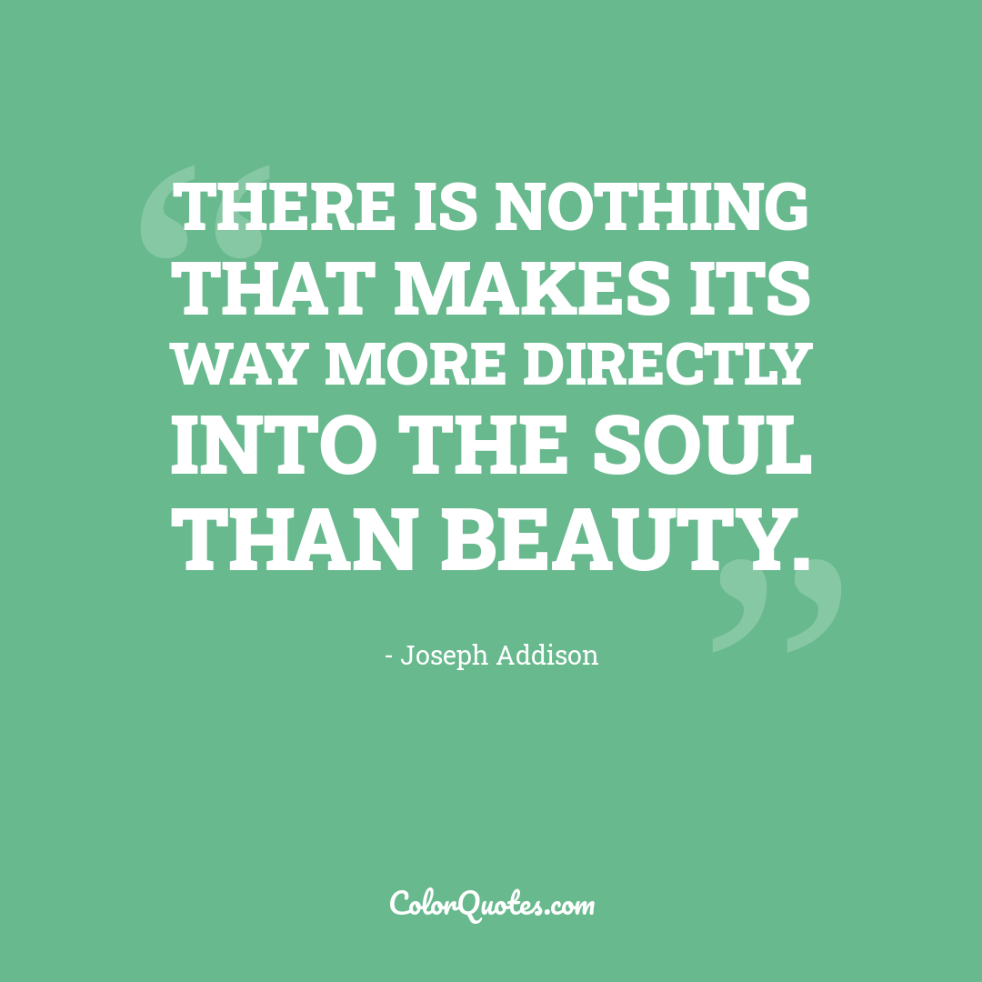There is nothing that makes its way more directly into the soul than beauty.
