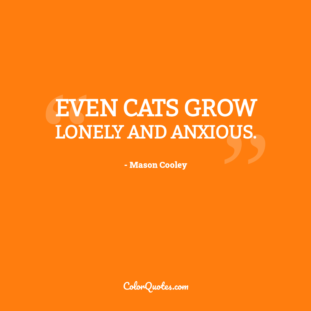 Even cats grow lonely and anxious.