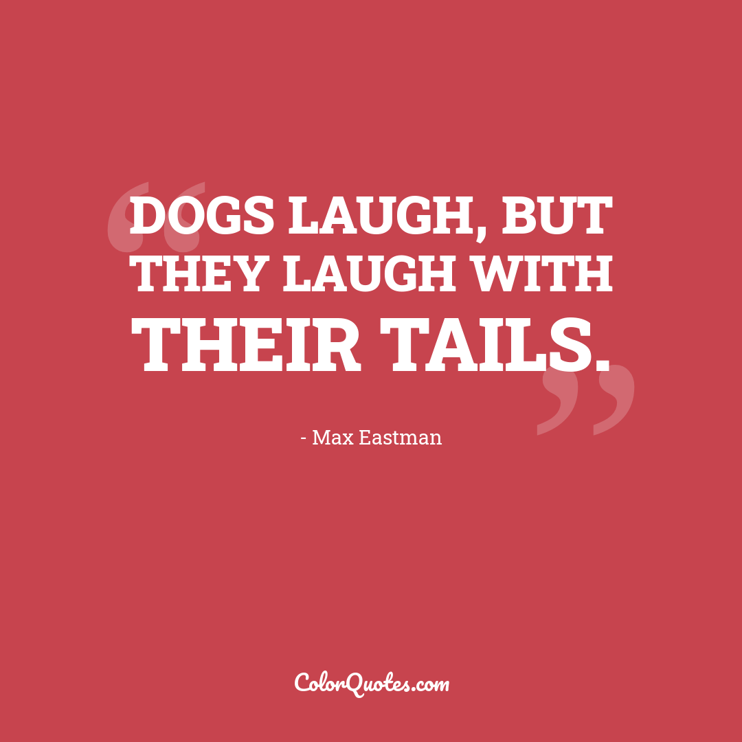 Dogs laugh, but they laugh with their tails.