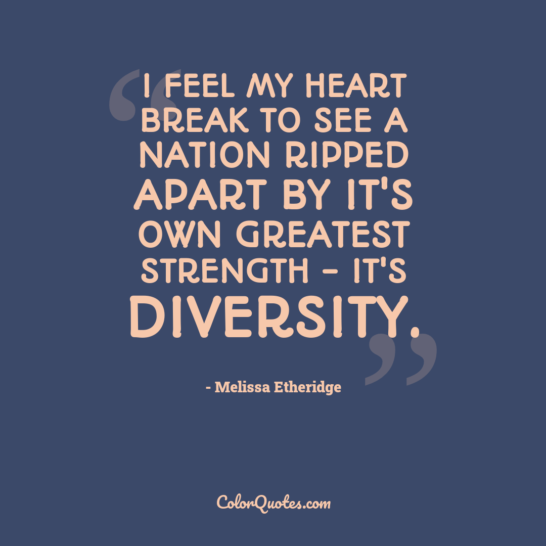 I feel my heart break to see a nation ripped apart by it's own greatest strength - it's diversity.