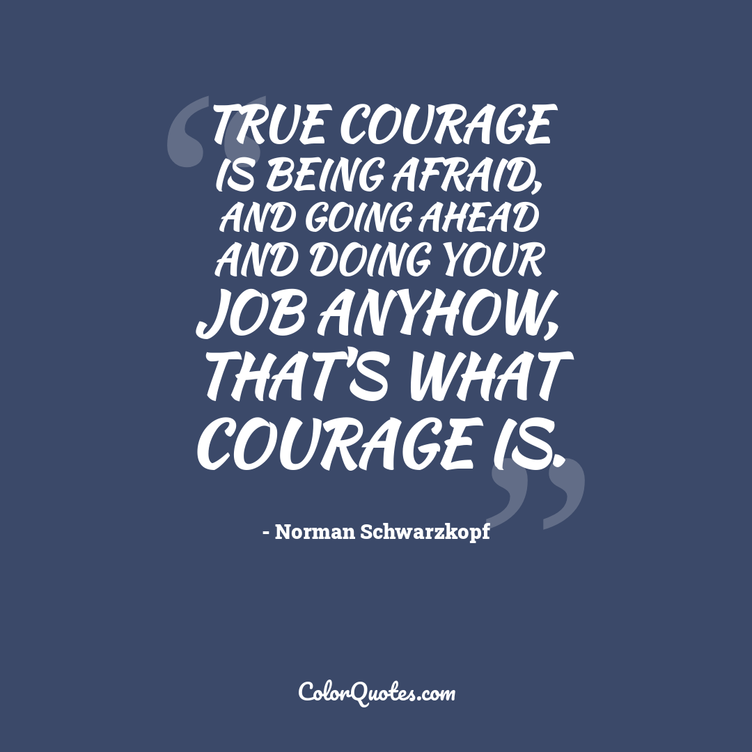 True courage is being afraid, and going ahead and doing your job anyhow, that's what courage is.