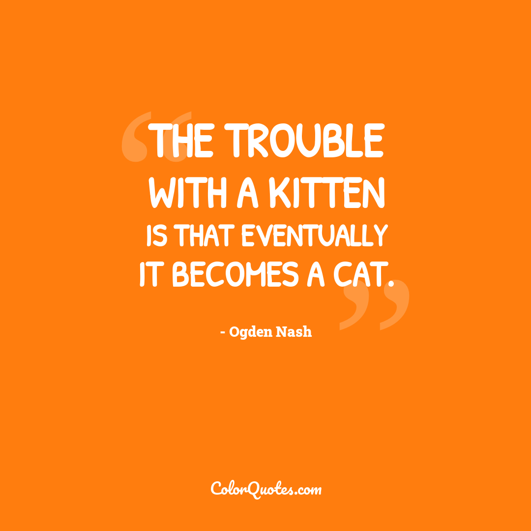 The trouble with a kitten is that eventually it becomes a cat.