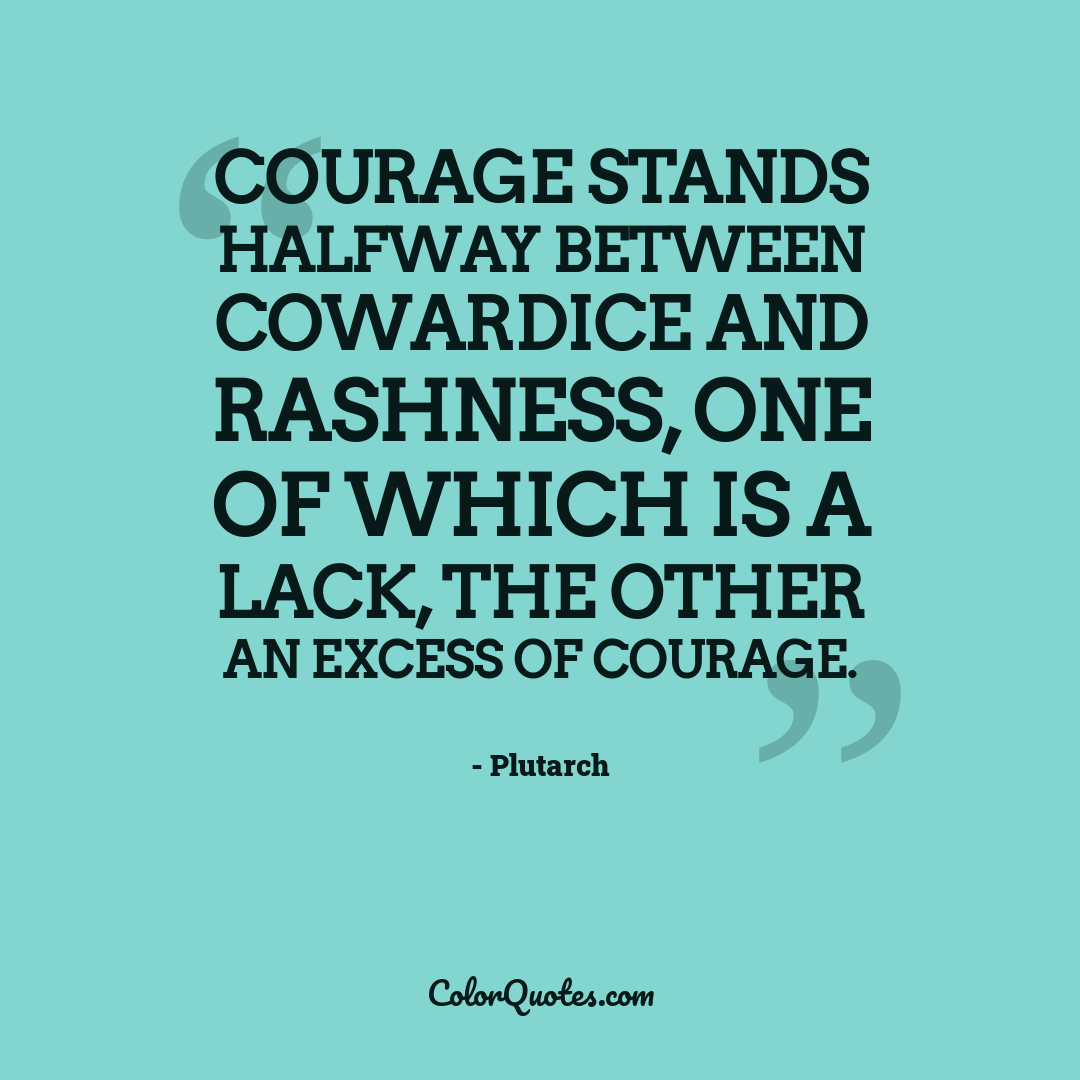 Courage stands halfway between cowardice and rashness, one of which is a lack, the other an excess of courage.