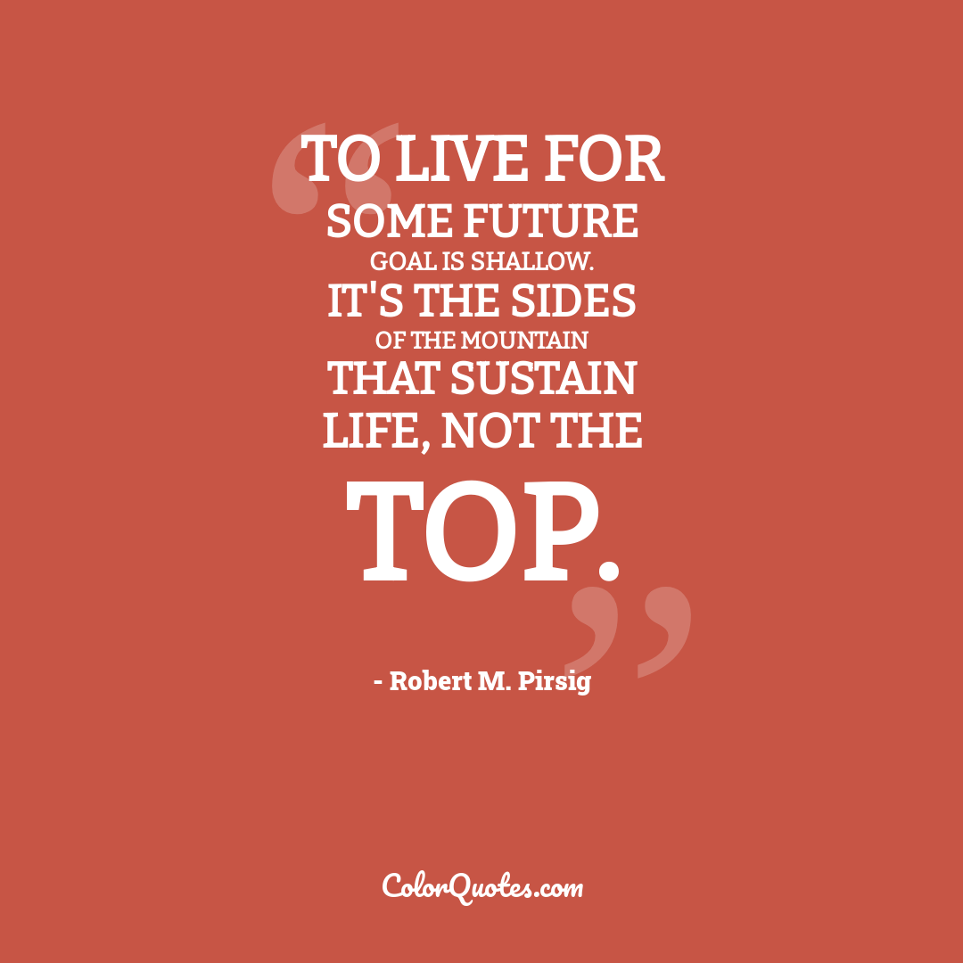 To live for some future goal is shallow. It's the sides of the mountain that sustain life, not the top.