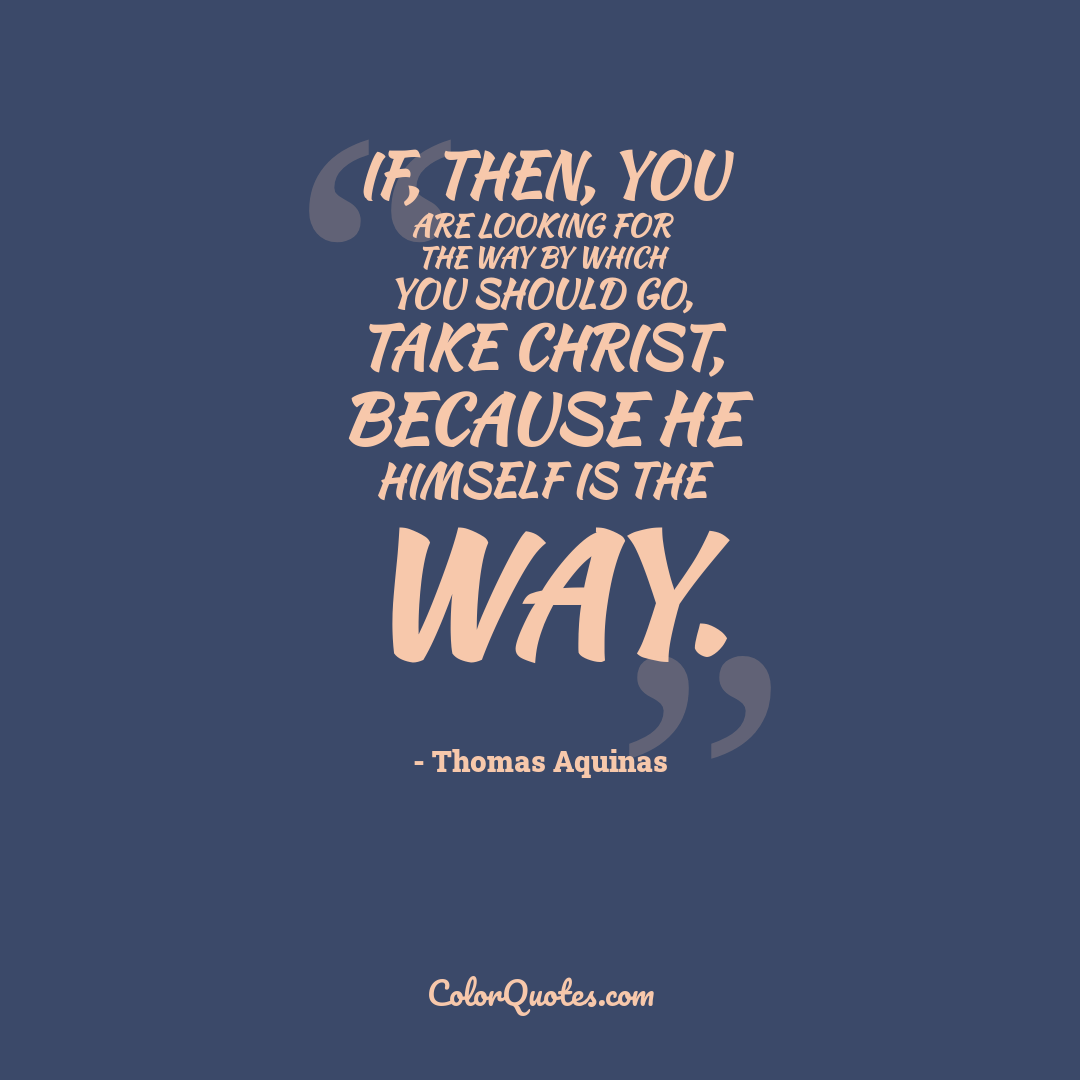 If, then, you are looking for the way by which you should go, take Christ, because He Himself is the way.