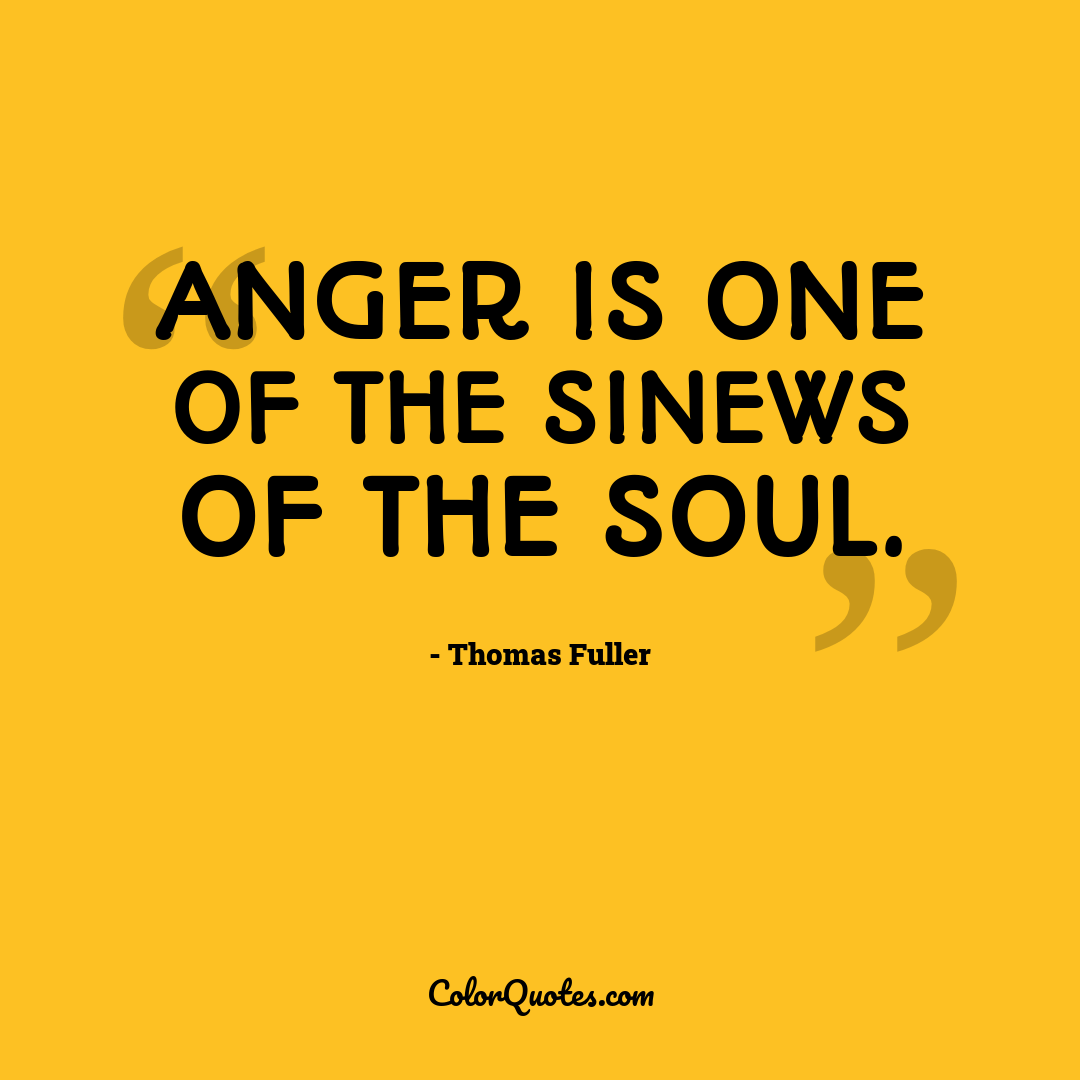 Anger is one of the sinews of the soul.
