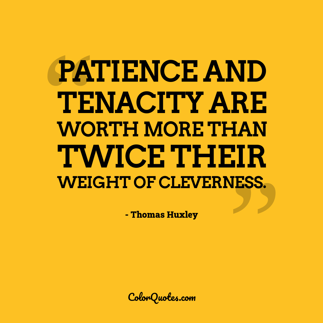Patience and tenacity are worth more than twice their weight of cleverness.