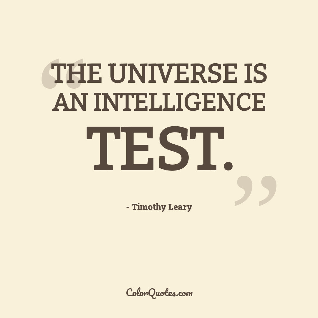 The universe is an intelligence test.