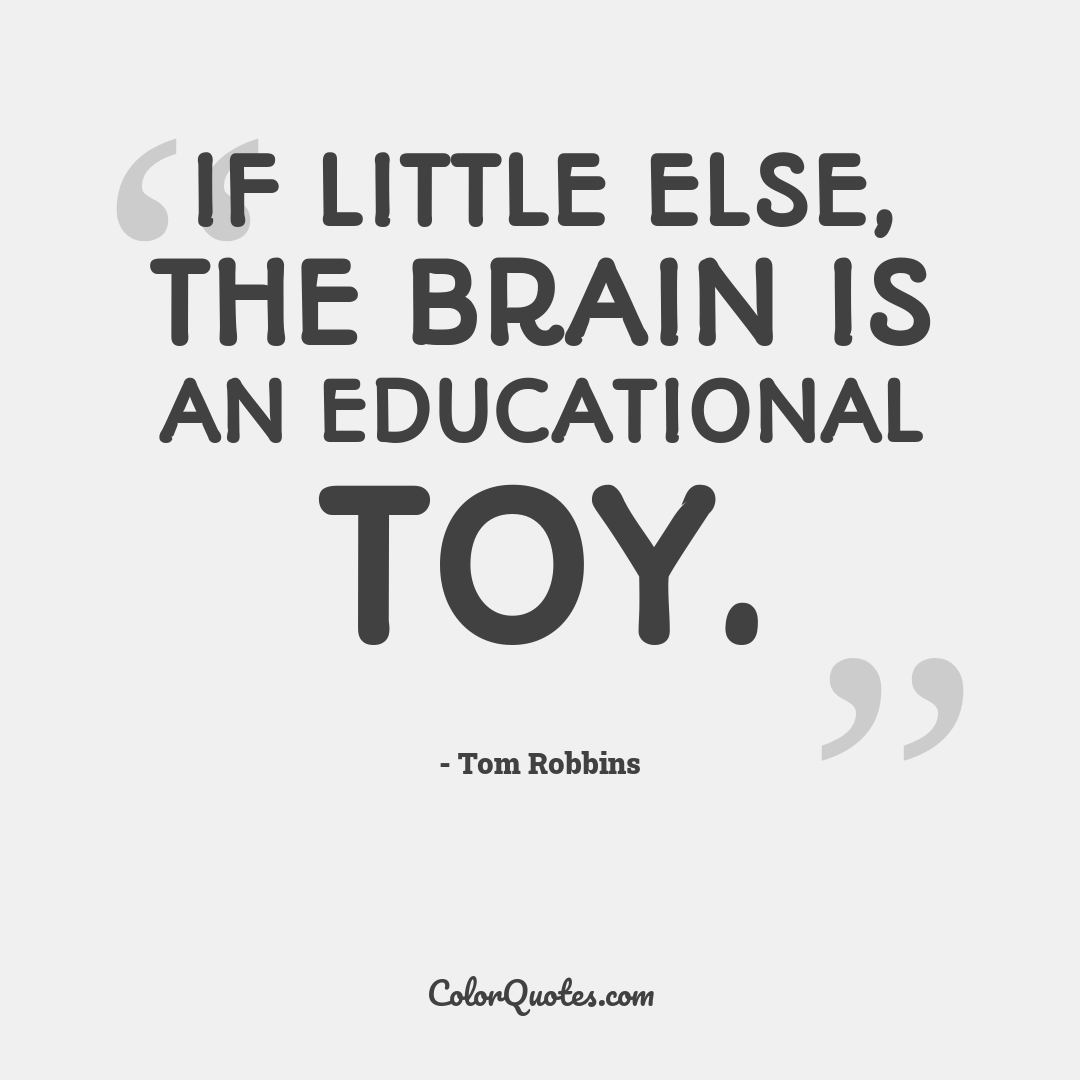 If little else, the brain is an educational toy.